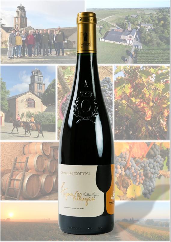 Anjou-Villages Vieilles Vignes